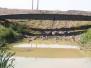 Brücken 20 m